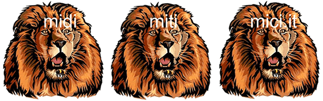 Logo midimitimici.it